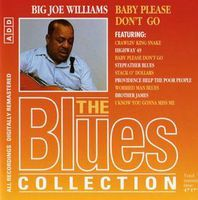 The Blues Collection - 36 - Big Joe Williams - Baby Please Don't Go